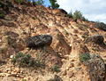 IB 08202 Boulder protecting soil column on degraded slope.JPG